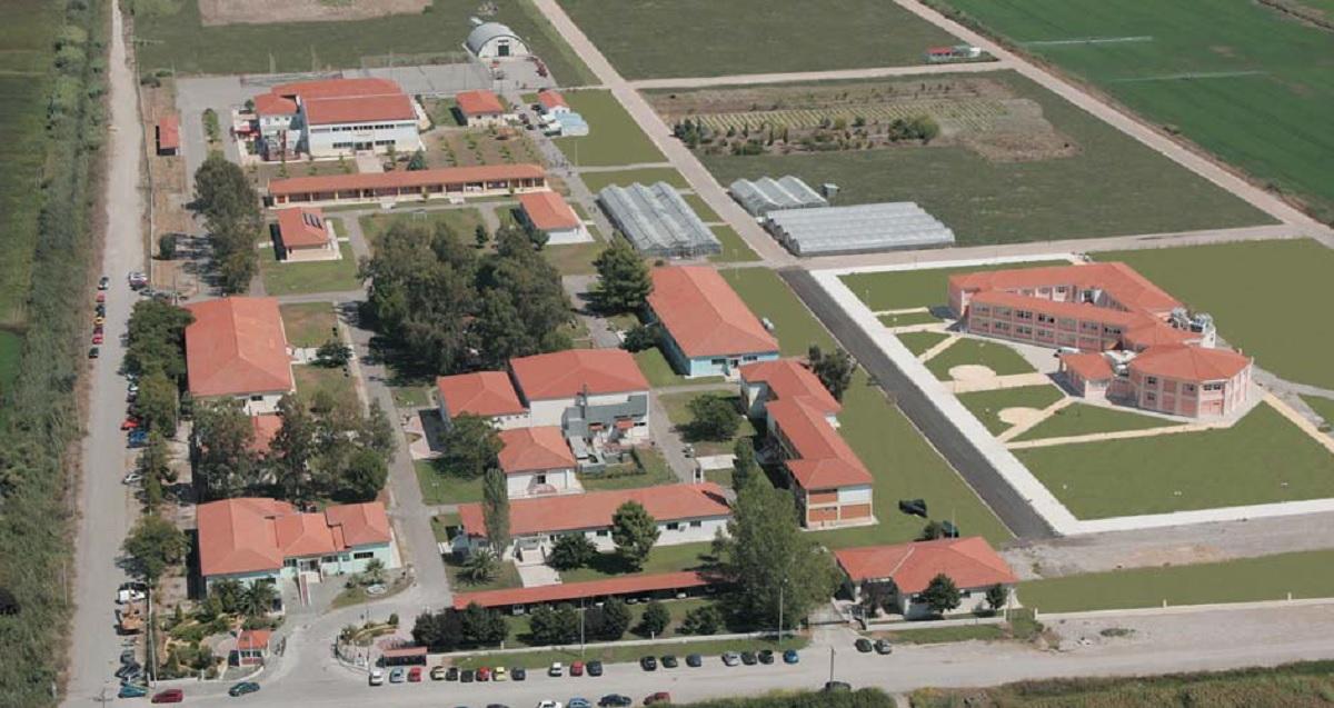 Εικόνα Εγκαταστάσεις Πανεπιστημίου Πατρών στο Μεσολόγγι